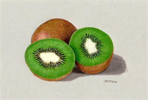 fruit drawings colored pencil drawing of kiwi fruit by jasminasusak on