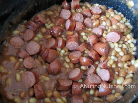 can dogs eat pinto beans 99summerdays archives eat move make