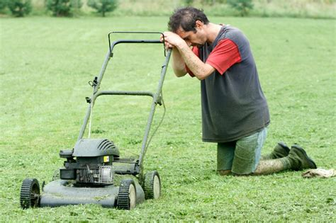 mowing the lawn for the sungardasvoice why doing it yourself diy is