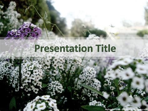 funeral powerpoint templates winter powerpoint template winter background holidays