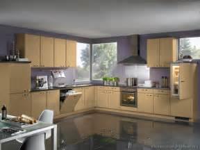 Modern light wood kitchen cabinets pictures amp design ideas