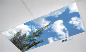 fluorescent light fixture covers fluorescent light covers skyscapes fluffy palm build