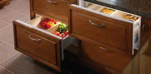 frizzy fridges your best companion for counter