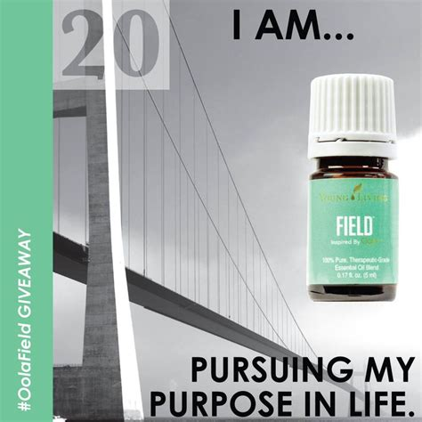 Living With Purpose By Lina Sukri 19 best living oola essential oils images on