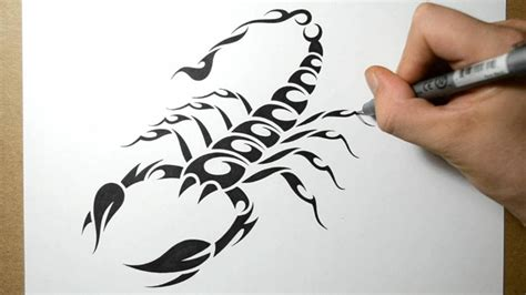 how to draw a tribal tattoo design how to draw a scorpion tribal design style