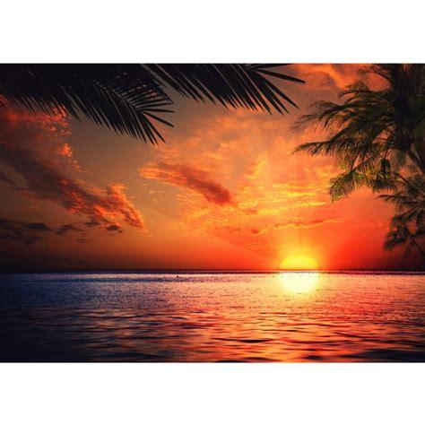 tapete meer strand sonnenuntergang palmen ambiznes