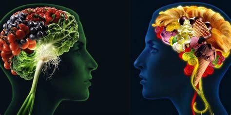 inteligencia digestiva digestive descubre la curiosa relaci 243 n entre cerebro y sistema digestivo