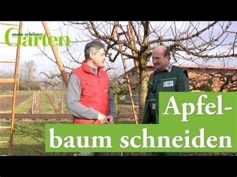 wann erntet ã pfel apfelbaum veredeln alte apfelsorte vermehren besondere
