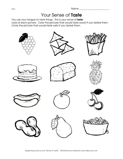 anatomy and physiology coloring workbook answers page 192 5 senses coloring pages gene green bean all about