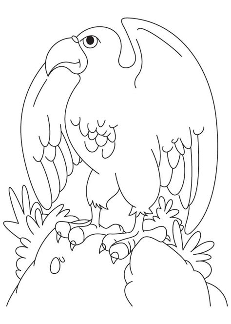 eagle wings coloring page free wings template coloring pages