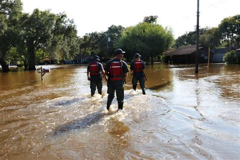 adoption sacramento ca california rescue crews help harvey recovery efforts in ncpr news