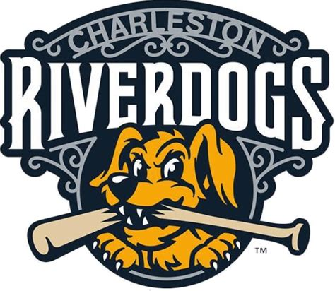 river dogs charleston riverdogs 2017 promotional stadium giveaways