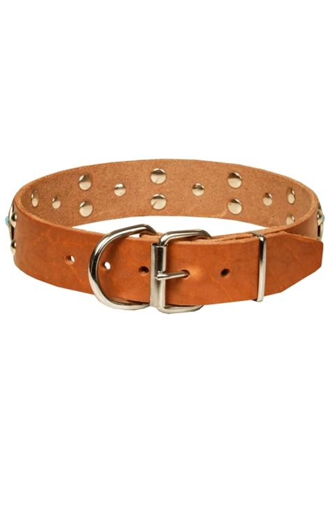 studded leather collars fancy studded leather collar with silver like decor