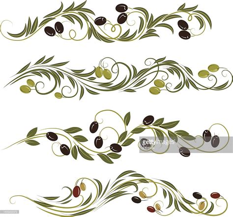 olive vector olive ornament vector art getty images