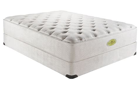 Simmons Naturally Mattress by Simmons Care Branch River Plush Mattress