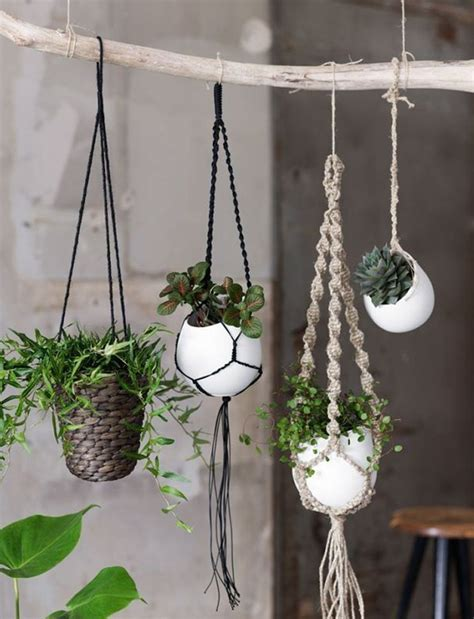 Plant Hanger Diy - 20 diy macrame plant hanger patterns do it yourself
