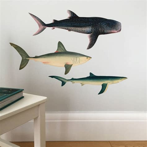 shark wall stickers sharks and whale shark wall sticker set by chameleon wall