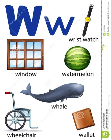 4 Letter Words That Start With W things that start with the letter w stock vector