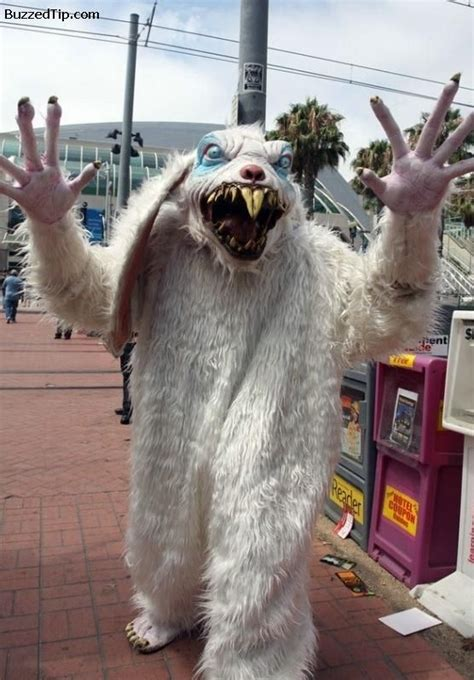 groundhog day costume 17 best images about easter on rabbit costume