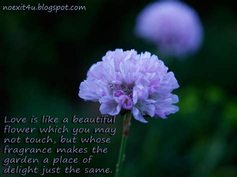 flower wallpaper with love quotes love quotes flower wallpaper high definition noexit4u com