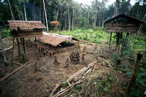 Peoples Home by The Korowai Tribe S Tree Houses Modern Met