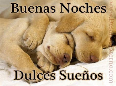 imagenes buenas tardes primos bonitos perritos con frases de buenas noches en im 225 genes