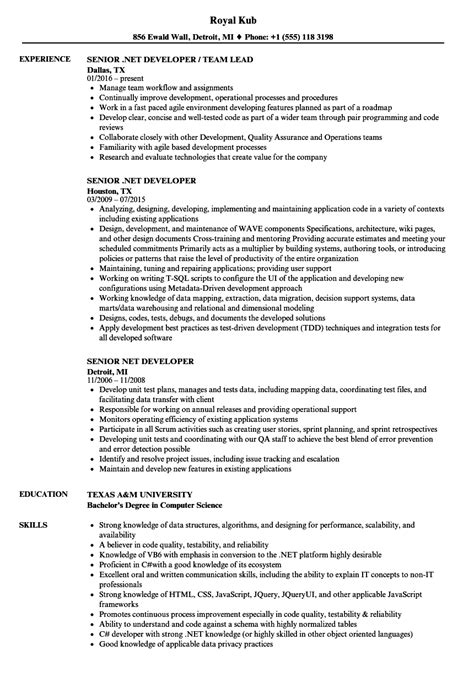senior developer resume template magnificent senior developer resume composition universal for resume writing avtomig info