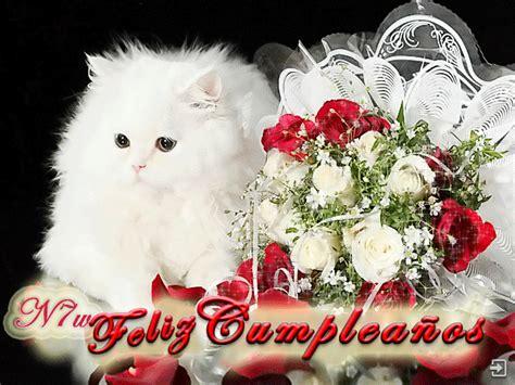 imagenes cumpleaños gatitos feliz cumplea 241 os a t 237 173 new multimedia