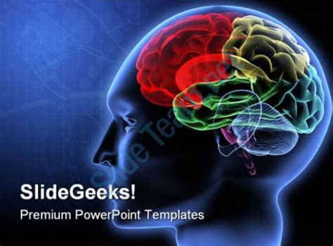 powerpoint themes for mac free fitfloptw info brain powerpoint templates fitfloptw info
