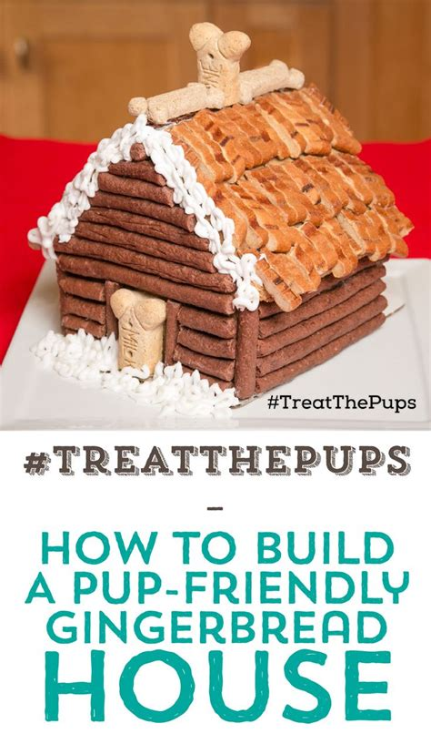 dog gingerbread house 1000 ideas about build a dog house on pinterest dog