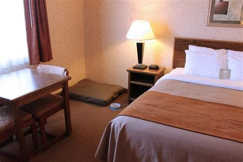 comfort suites dillon colorado comfort inn dillon updated 2018 hotel reviews price