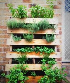 paletten garten pallet herb garden a source of remedy pallet