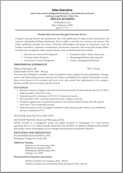 Resume Sles For It Executive Resume For Sales Executive Sales Sales Lewesmr