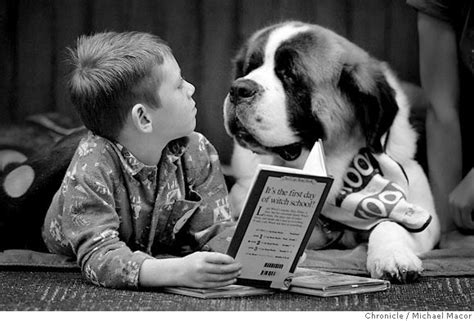 reading to dogs lending an ear reading to dogs is adorable and a real thing the middleboro