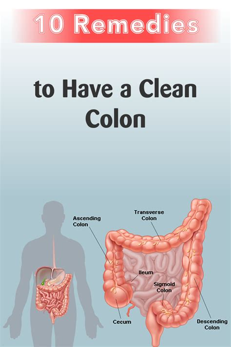 a clean colon with these 10 remedies abc of health