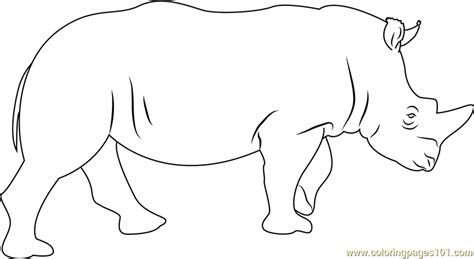 rhino coloring page rhino coloring page free rhinoceros coloring pages