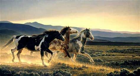 imagenes de paisajes salvajes cuadros modernos pinturas y dibujos bellos paisajes y