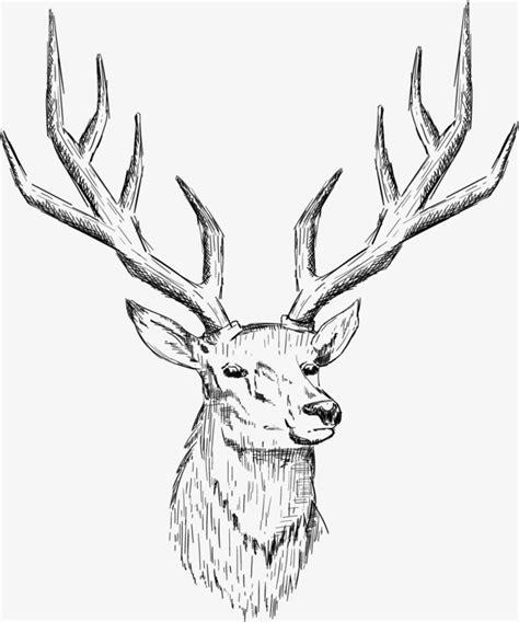 imagenes de venados en blanco y negro dibujo cabeza de ciervo cabeza de ciervo de n 243 rdicos