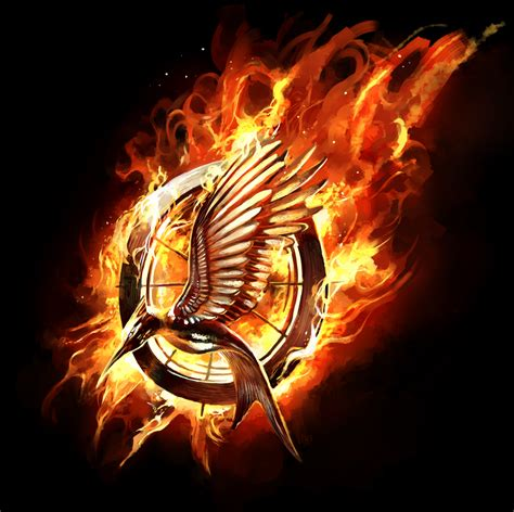 Hunger Games Catching Fire Symbol
