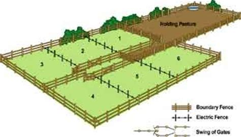 farm layout meaning rotational grazing is another way to help let the grass