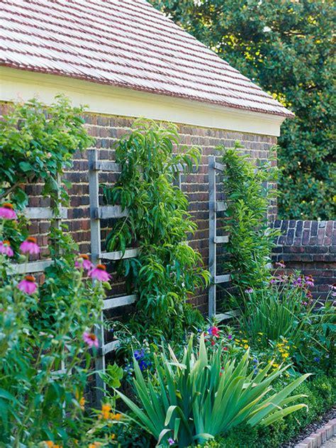 small garden ideas better homes gardens