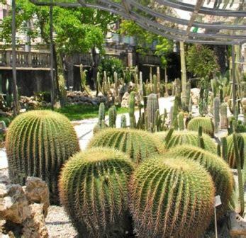 ville e giardini palermo ville giardini e parchi www palermoviva it