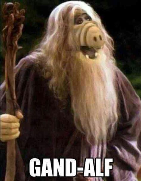 Alf Meme - hybrid wizard