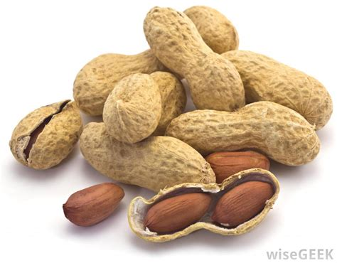 peanuts pictures what are the different types of peanuts with pictures