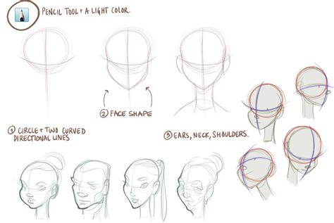 sketchbook basic tutorial how to draw faces step by step
