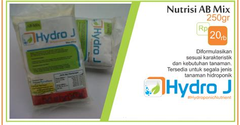 Pepaya California Hibrida nutrisi hidroponik tanam sayuran