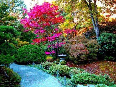 imagenes de los jardines mas bonitos arte y jardiner 205 a los 225 rboles en el jard 237 n