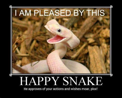 Snake Meme - bad joke snake snek pinterest jokes and snakes