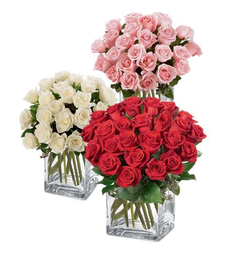 Two Dozen Roses by Two Dozen Roses Weekly Flowers Ottawa Flower Delivery