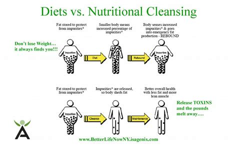 Diet Vs Detox by Plexus Shake Vs Isogenix Shake A Health Magazine